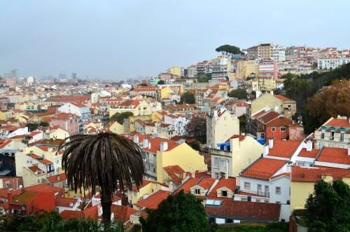 Вид на жилые кварталы
