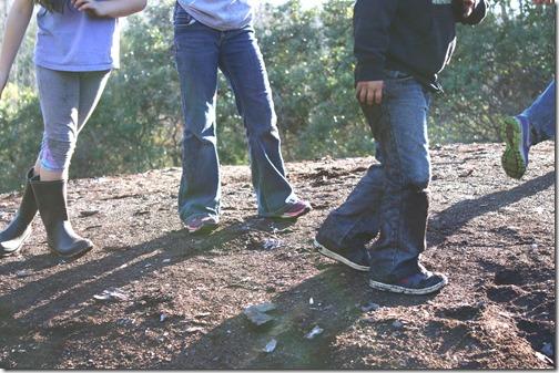 Sawdust pile feet