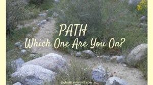 Path – Which one are you on?