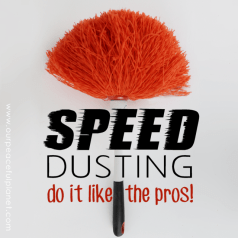 Speed-Dusting-SQ