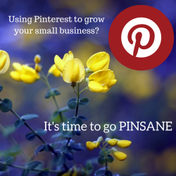 Using pinterest to grow your small business