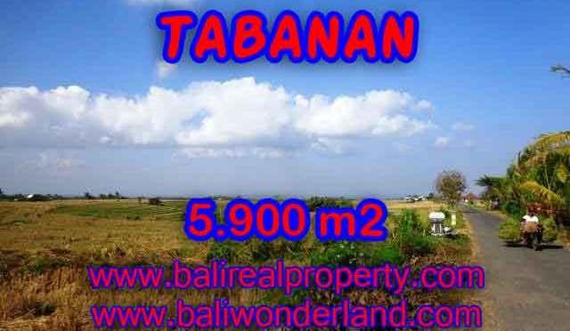 DIJUAL MURAH TANAH DI TABANAN BALI TJTB131 - PELUANG INVESTASI PROPERTY DI BALI