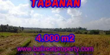 DIJUAL TANAH MURAH DI TABANAN BALI TJTB132 - INVESTASI PROPERTY DI BALI