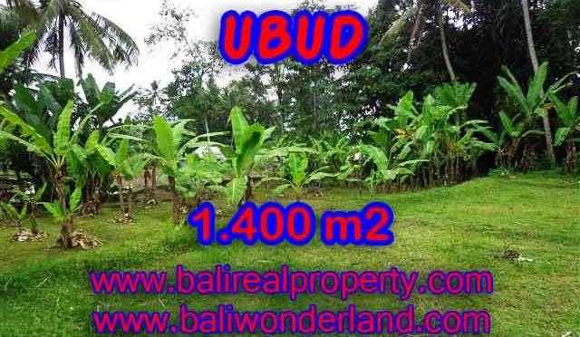 DIJUAL TANAH DI UBUD BALI TJUB419 - INVESTASI PROPERTY DI BALI