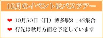 30代女性が選ぶ福岡天神の結婚相談所ジュブレの婚活パーティー情報