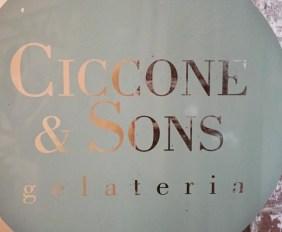 Ciccone Sons Gelateria Redfern Jugernauts (1)