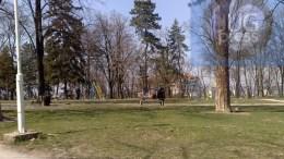 park-devet-jugovica-1