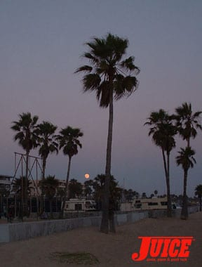 Venice Full Moon. Photo: Terri Craft
