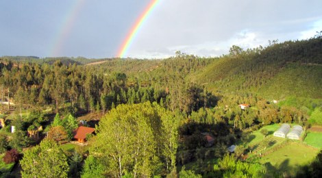 We often get rainbows in Moura Morta, and amazing light over the forests. This is the view from our balcony!