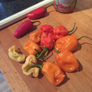 The peppers. I also used my peach ghost peppers (the weird wrinkly looking ones).