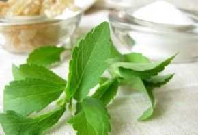 stevia-educorante-01