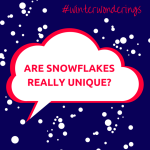 Are Snowflakes Really All Different?