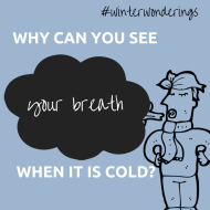 Why can you see your breath when it is cold?