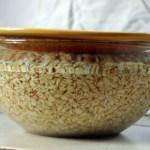 Cranberry Mango Oatmeal Porridge