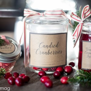 Cranberry Gifts- with Vanilla-3