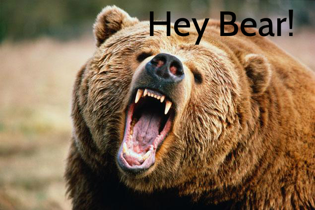 Angry-Bear-Grizzly