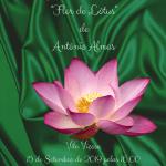 Apresentação do Livro Flor de Lotus 15-IX-2019