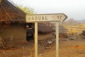 Gaoual: Vol de bétail, interférence de l'autorité locale dans des affaires judiciaires à Wendembour, le sous-préfet pointé du doigt