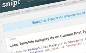 embedでソースコードを表示させることも可能なスニペット投稿サイト・snipt