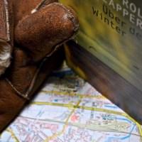 Wohin geht die Reise?