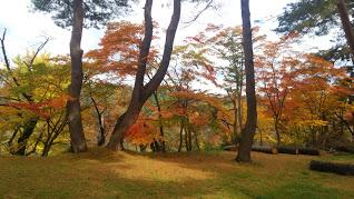 秋 イメージ:横手の紅葉         鳴子峡の黄色鮮やか 奥には鬼首の赤色鮮やか