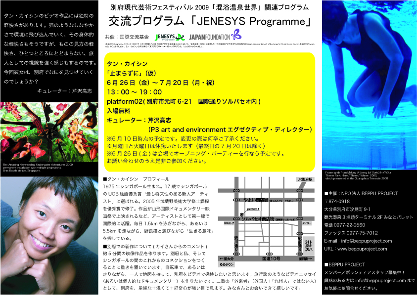 2009: Japan Foundation brochure about Kai's artist-in-residency award in Beppu's Mixed Bathing World.