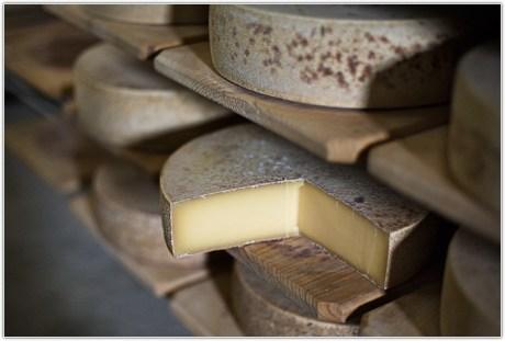 Как хранить сыр в дороге?