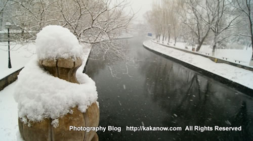 China Beijing Zoo, spring snow in March. Photo by KaKa.