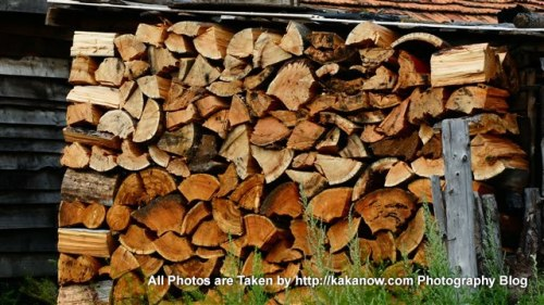 China travel, Inner Mongolia, Hing'an, Aer Mountain, firewood in small village. Photo by KaKa.