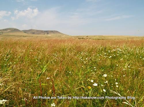 China travel, Inner Mongolia, Xilin-Gol, Prairie. Photo by KaKa.