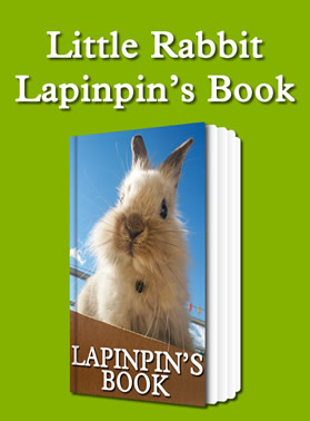 eBook: Lapinpin's Book for Win8 on Windows Store