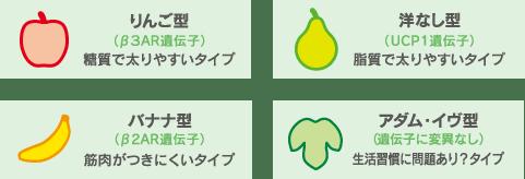 日本人の4つのタイプ