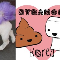 5 Things That Are STILL Strange About Korea