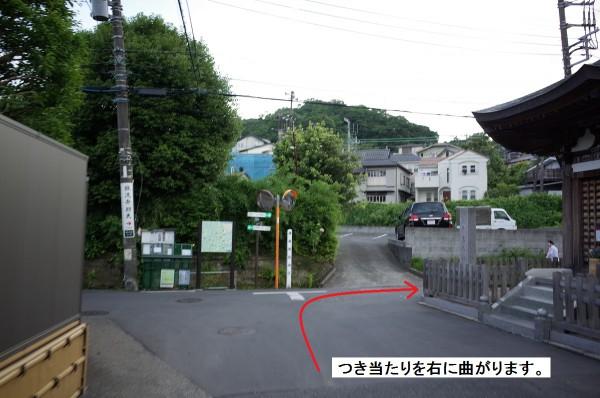 GR350176
