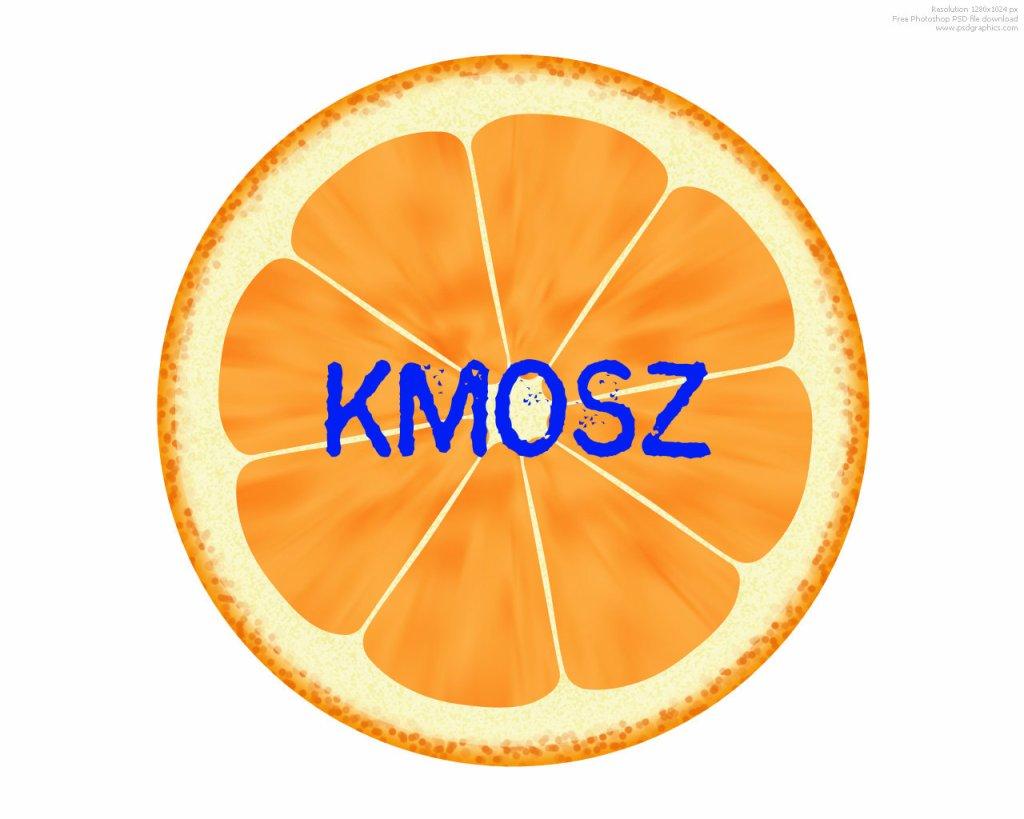 Megosztotta a kanadai magyarságot a fideszes pártpolitika, ami a KMOSZ-ban is észlelhető.