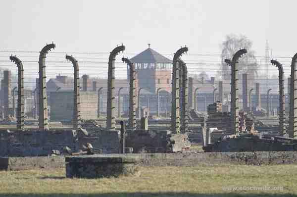 Egész Európa meghalt Auschwitzban
