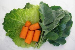 Kaninchen Ernährung Gemüse