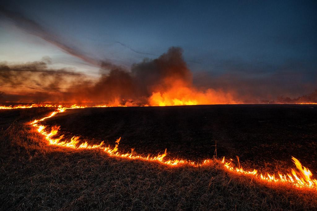 Burn #2135