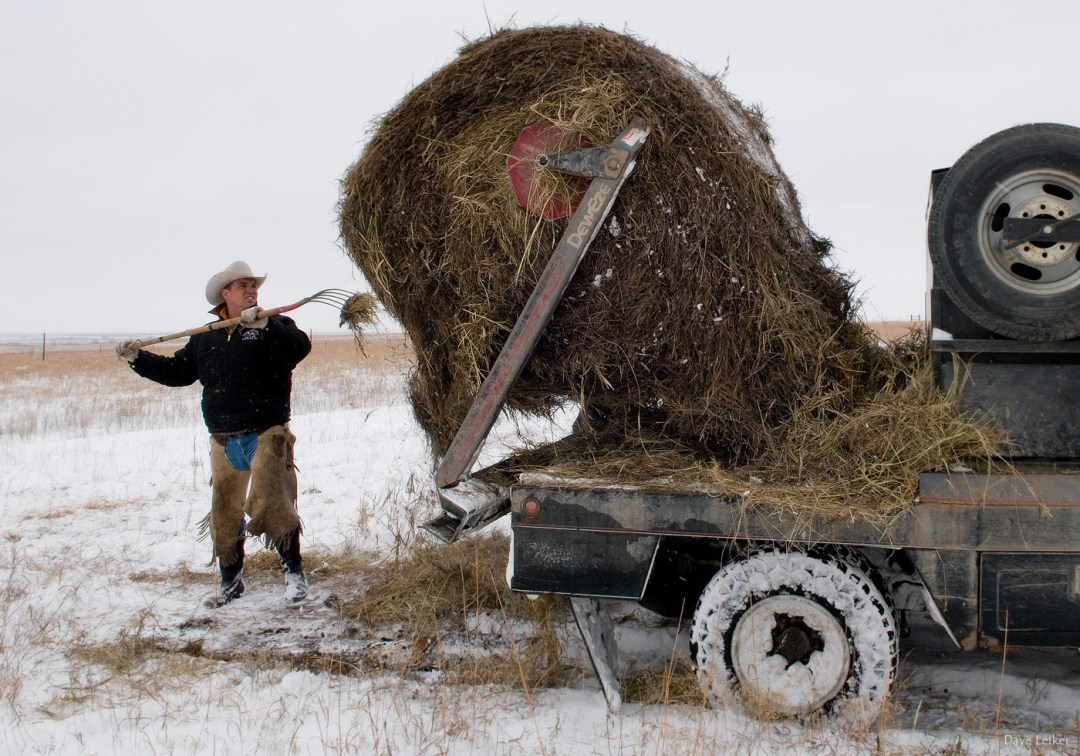 winter_ranching_0858_web