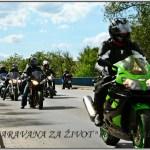 Karavana 2012 9