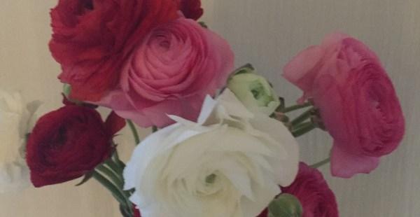 西麻布  プロの御用達!新鮮な花が激安で買えちゃう花屋さん