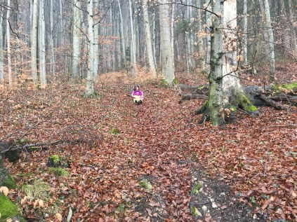 girl sliding down hill, muddy, trail hiking, winter hiking, woods, europe