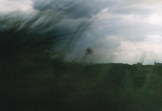 Karin-Mueller-gras-wind-p