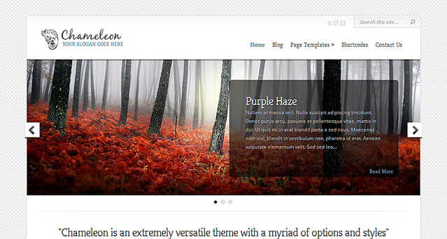 Download Chameleon WordPress Theme Free