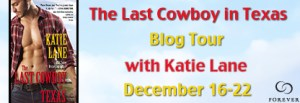 The Last Cowboy in Texas Blog Tour