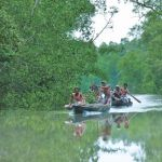 Bangladesh cannot survive without the Sundarbans