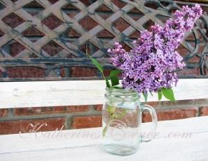Wordless Wednesday Purple Lilacs