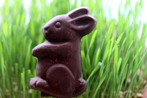 homemade-easter-chocolate-bunny-