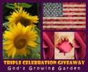 celebration giveaway