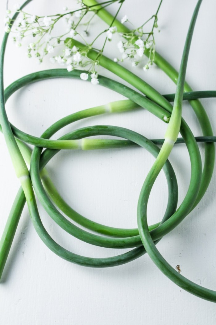 Garlic Scapes {Katie at the Kitchen Door{
